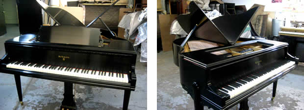 Beautiful Knabe Butterfly Baby Grand